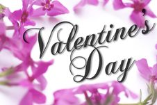 Free Valentine S Day Card Stock Photo - 7703260