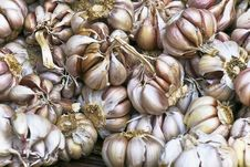 Free Colourful Garlic Cloves Royalty Free Stock Photography - 7703447