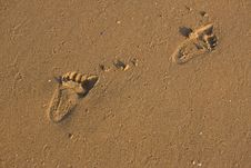 Free Footstep Stock Image - 7704021