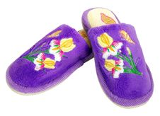 Free Soft Slippers Stock Photo - 7704070