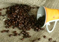 Free Grains Of Coffee And A Cup On Sacking Royalty Free Stock Image - 7704116