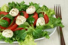 Free Mozzarella Salad Royalty Free Stock Photography - 7704347