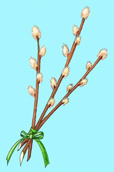Free Easter Bouquet Of Willow Royalty Free Stock Photography - 7704397