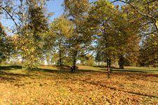 Free Autumn Park Stock Photo - 7705520