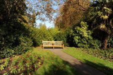Free Autumn Park 2 Royalty Free Stock Photography - 7705637