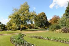 Free Autumn Park 13 Royalty Free Stock Photo - 7706215