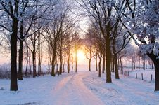 Free Winter Sunset Royalty Free Stock Photo - 7706925