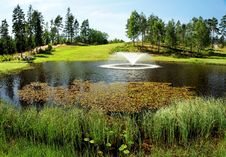 Free Golf Course Pond Royalty Free Stock Photo - 7708235