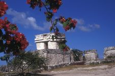 Free Tulum Ruins Royalty Free Stock Photography - 7708307
