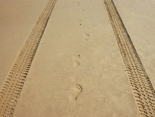Tracks And Footprints On The Beach Royalty Free Stock Images