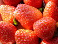 Free Red Strawberry Stock Photos - 7710533