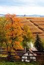 Free Autumn Scenery Stock Image - 7718621