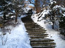 Free Winter Landscape, Park Stock Image - 7710651