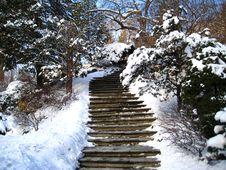 Free Winter Landscape, Park Stock Photography - 7710652