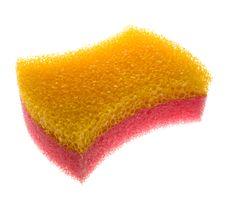 Free Sponge Royalty Free Stock Images - 7711469