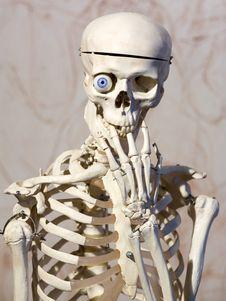 Free Skeleton With Blue Eye Royalty Free Stock Image - 7712966