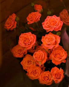 Free Close-up Bunch Of Red Roses Royalty Free Stock Photography - 7712987