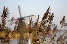 The Mills Of Kinderdijk, The Netherlands Royalty Free Stock Images