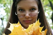 Free With Autumn Leaves Stock Image - 7714391