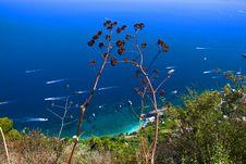 Free Capri Stock Images - 7715554