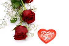 Free Red Roses Royalty Free Stock Photography - 7716767