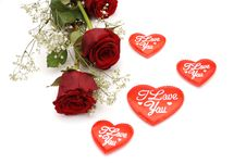 Free Red Roses Stock Photography - 7716792