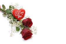 Free Red Roses Stock Image - 7716871