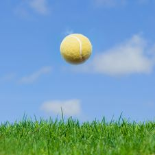 Free Tennis Ball Royalty Free Stock Photography - 7719497