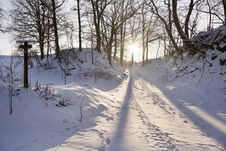 Free Snowy Footpath Royalty Free Stock Photography - 7719557