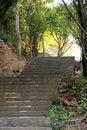 Free Step Stock Photo - 7726830