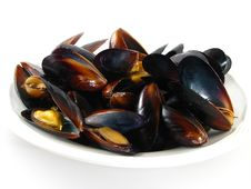 Free Steamed Muscles Stock Photos - 7721043