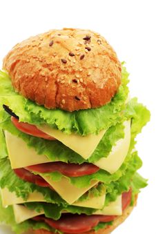 Free Burger Stock Photos - 7721973