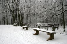 Free Winter Scenery Stock Photography - 7722012