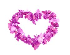 Free Violet Heart Stock Image - 7724521