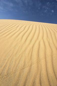 Free Sand Dune Stock Photo - 7726130