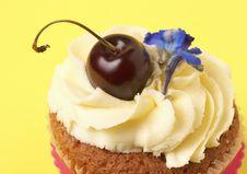 Miniature Vanilla Cupcake With Cherry Stock Photo