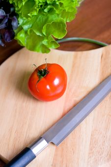 Free Tomato Stock Photography - 7728802