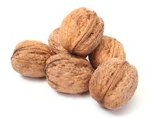 Free Walnut In Closeup Stock Images - 7729614