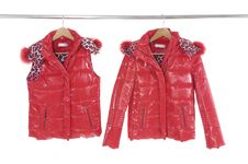 Free Fashion Clothing Stock Photo - 7729630