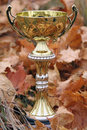 Free Trophy Cup Stock Image - 7730631