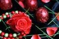 Free Valentines Day Treats Royalty Free Stock Photo - 7736705