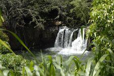 Hawaiian Waterfall 2
