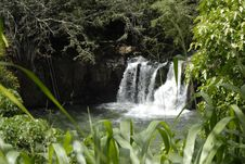 Hawaiian Waterfall 2 Royalty Free Stock Photo