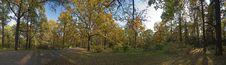 Free Autumnal Panorama Stock Photos - 7731613