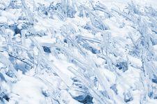 Free Frozen Grass Stock Photos - 7732033