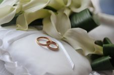 Free Bride Bouquet Royalty Free Stock Photos - 7732688