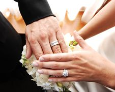 Free Couple Shows Wedding Rings. Stock Photos - 7733313