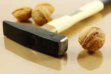 Free Walnuts And Hammer Royalty Free Stock Photo - 7733835