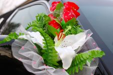 Free Wedding Decoration On Black Limousine Car. Stock Image - 7734461