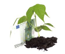 Free String Beans And Denominations Stock Photos - 7734863
